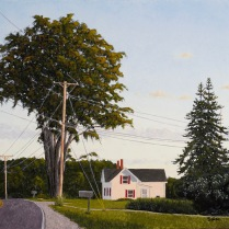 The Old Elm at Dusk - Westport Island